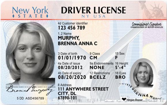 driver-license